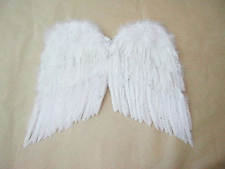 angel-001