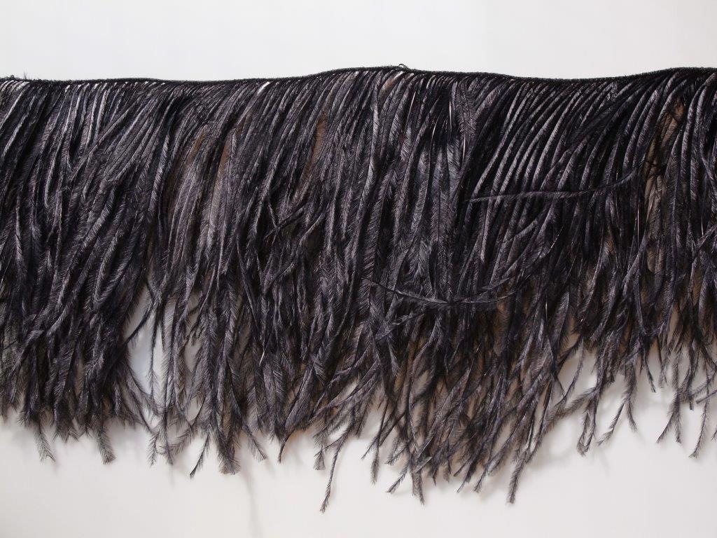 ostrich-057a